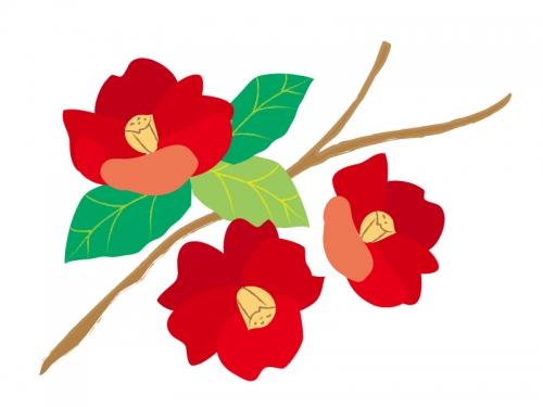真っ赤な椿の年賀状イラスト