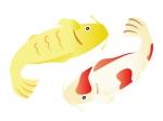 金と紅白の鯉の年賀状イラスト