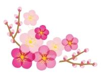 梅と木に咲いている梅の花の年賀状・お正月イラスト02