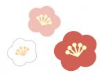 三色の梅の花の年賀状・お正月イラスト04